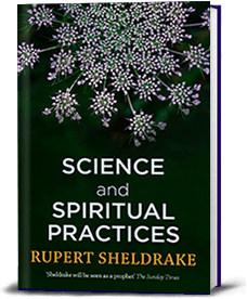 Book cover for Science and Spiritual Practices: Transformative experiences and their effects on our bodies, brains and health