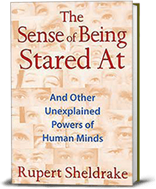 Book cover for The Sense of Being Stared At