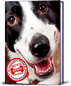 Book cover for Boy's Best Friend