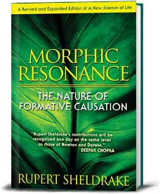 Book cover for Morphic Resonance