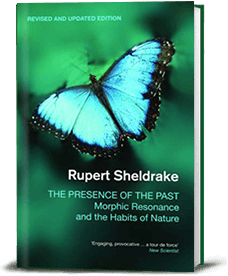 Book cover for The Presence of The Past