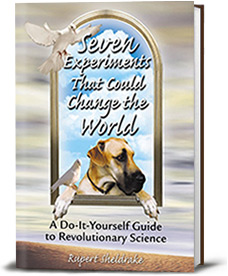 Book cover for Seven Experiments That Could Change the World
