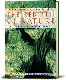 Book cover for The Rebirth of Nature