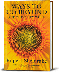 Book cover for Ways to Go Beyond and Why They Work